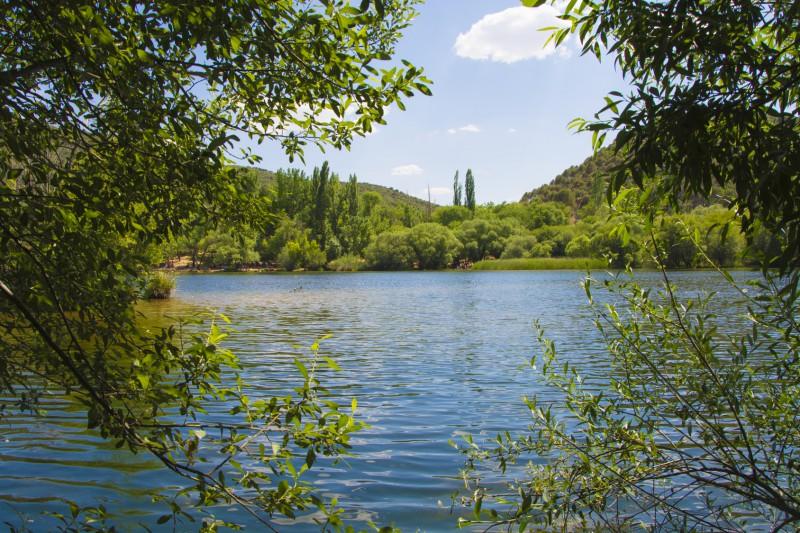 piscina natural pantano