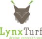 Lynx-turf
